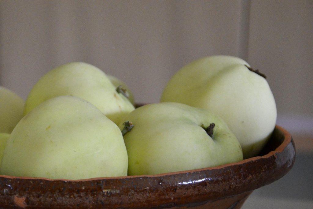 Jordens tunna skal - med äpplets skal som symbol