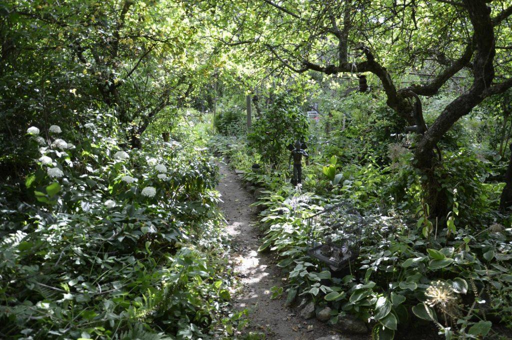 Problemet med prydlighet. Bild på lummig trädgård.