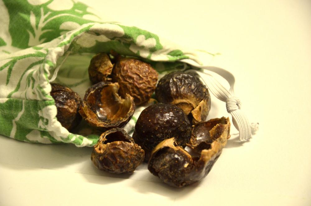 tvättnötter