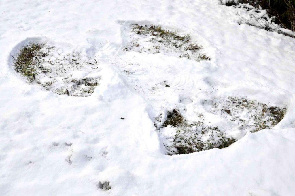 klimatsorg. Bild på snöängel.