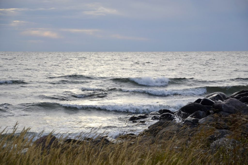 Investering i vindkraftandelar. Bild på vind vid strand.