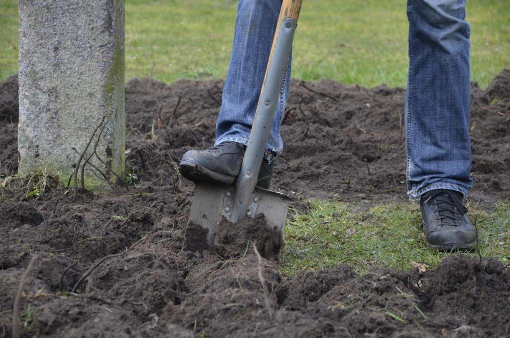 Att gräva djupare. Bild på grävande i gräsmatta med stor spade.