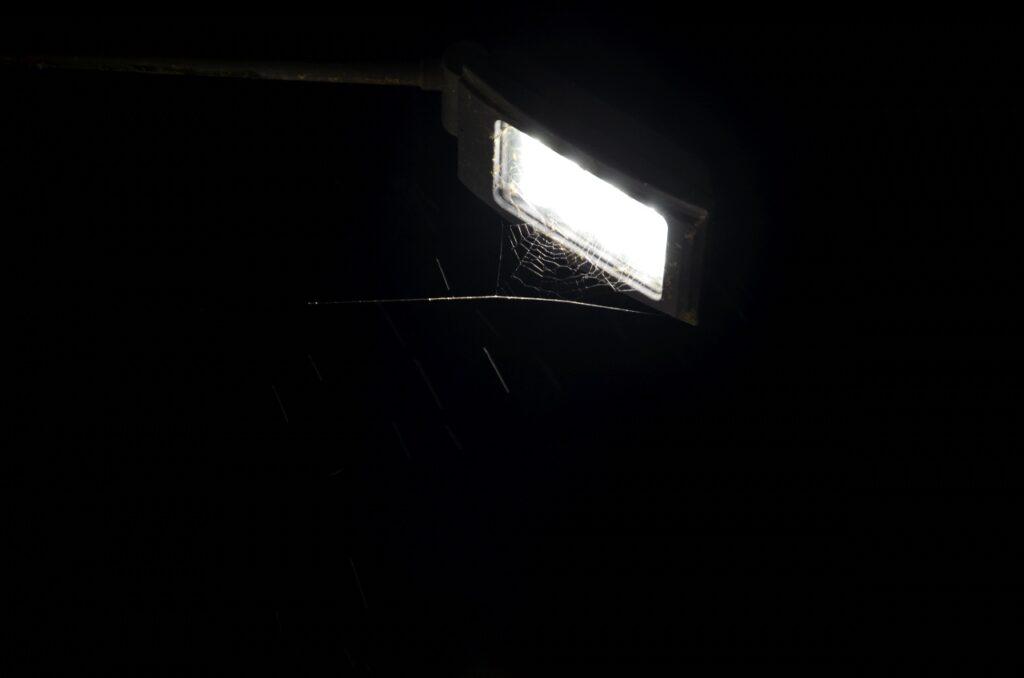 Minimera ljusföroreningar. Bild på belysning med spindelnät under.